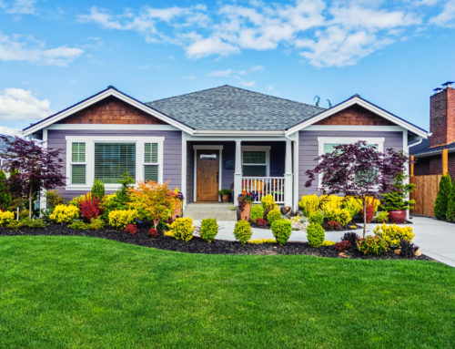 Curb Appeal: Five Simple Tips to Help Your House Stand Out